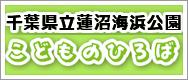 千葉県立蓮沼海浜公園